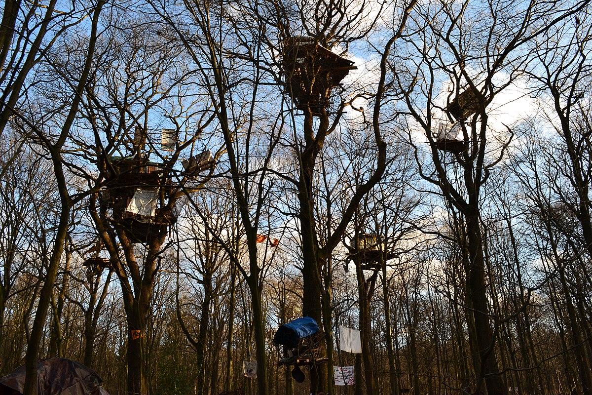 Baumhäuser im Hambacher Wald